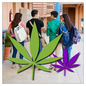 cannabis leaf over children at school